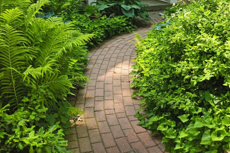 εξωραϊσμένο κήπος μονοπάτι τούβλου στοκ φωτογραφία