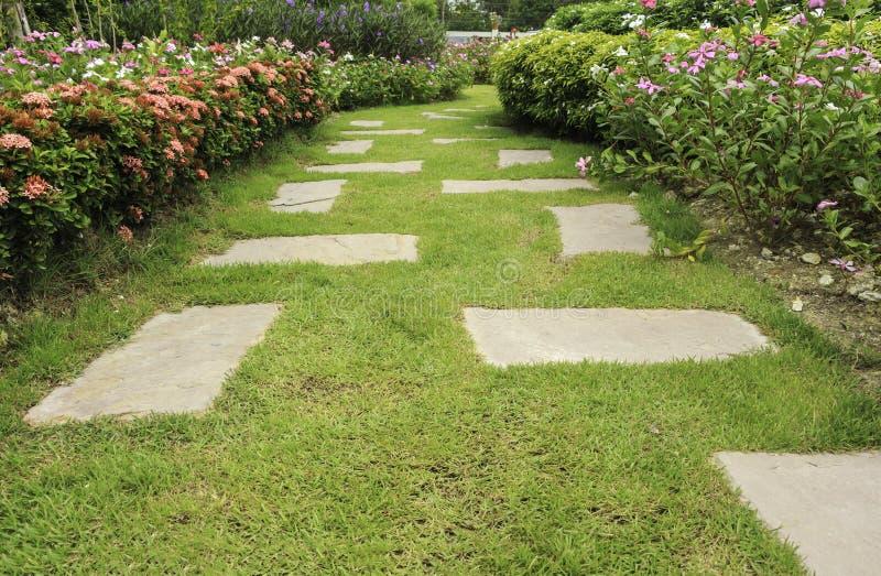 εξωραϊσμός κήπων στοκ φωτογραφία με δικαίωμα ελεύθερης χρήσης