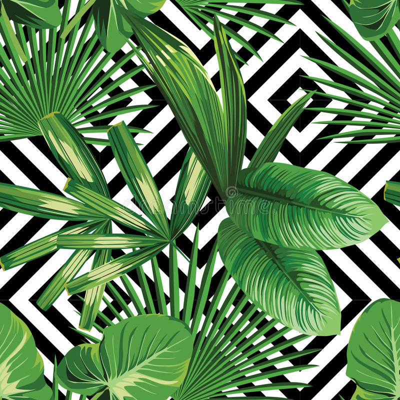 Εξωτικά ζουγκλών φύλλα φοινικών φυτών τροπικά ελεύθερη απεικόνιση δικαιώματος