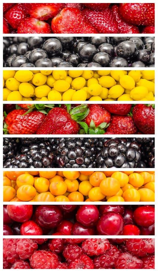 Εξωτικά θερινά φρούτα στοκ φωτογραφία
