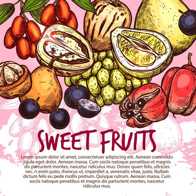 Εξωτικά φρούτα ή γλυκιά τροπική αφίσα σκίτσων μούρων διανυσματική απεικόνιση