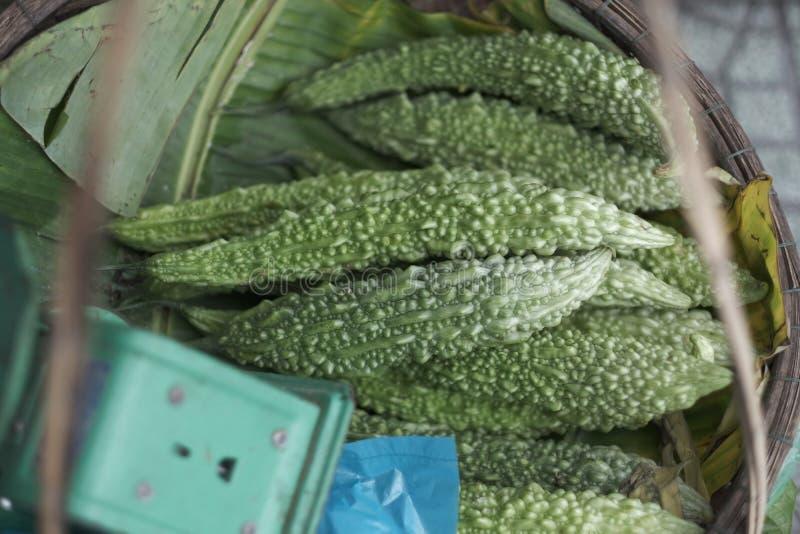 Εξωτικά φρούτα του πικρού κινεζικού πεπονιού στοκ φωτογραφία με δικαίωμα ελεύθερης χρήσης