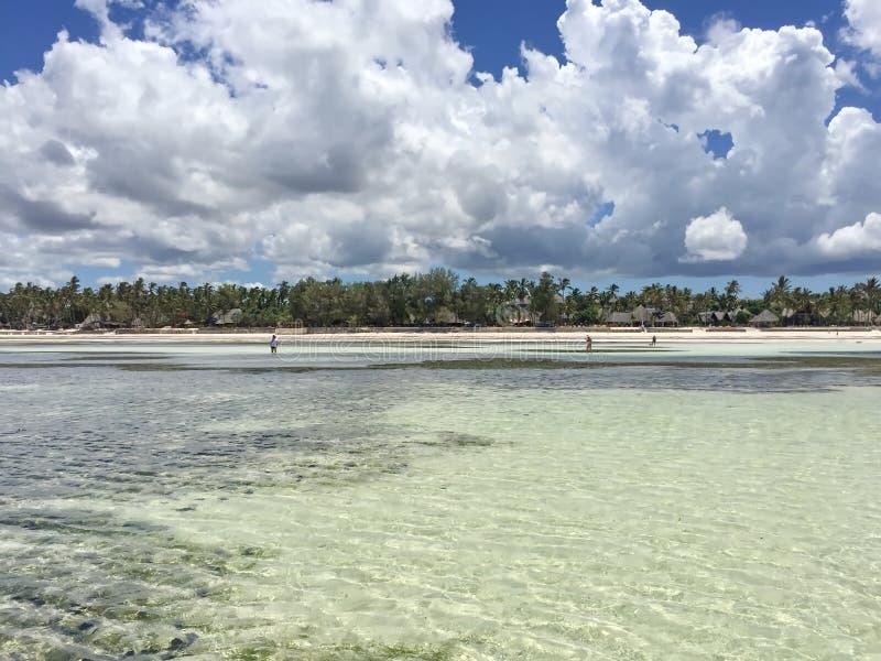 Εξωτική παραλία στον Ινδικό Ωκεανό zanzibar στοκ φωτογραφίες με δικαίωμα ελεύθερης χρήσης