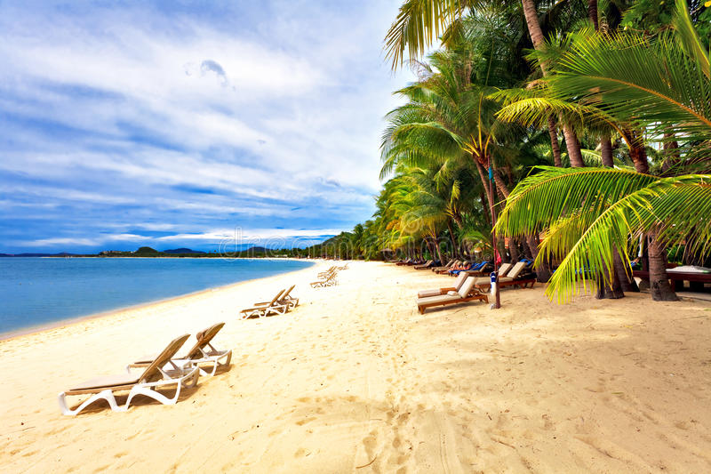 Εξωτική τροπική παραλία. στοκ φωτογραφία με δικαίωμα ελεύθερης χρήσης
