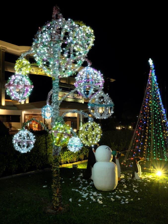 Εορτασμοί Χριστουγέννων στις χώρες με τα θερμά κλίματα Διακοσμήσεις Χριστουγέννων σε ένα πράσινο στοκ εικόνες