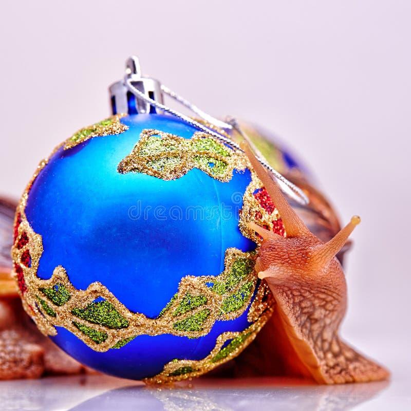Εορταστική νέα έννοια ετών με τα σαλιγκάρια και τις σφαίρες Χριστουγέννων στο άσπρο υπόβαθρο στοκ εικόνες