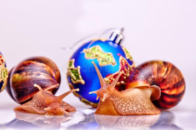 Εορταστική νέα έννοια ετών με τα σαλιγκάρια και τις σφαίρες Χριστουγέννων στο άσπρο υπόβαθρο στοκ φωτογραφία με δικαίωμα ελεύθερης χρήσης