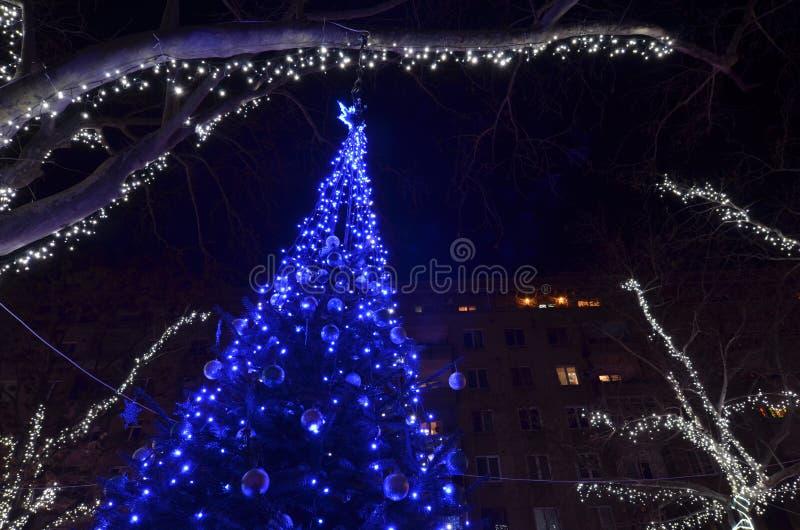 Εορταστικό διακοσμημένο χριστουγεννιάτικο δέντρο με τα μπλε οδηγημένα φω'τα στοκ εικόνα με δικαίωμα ελεύθερης χρήσης