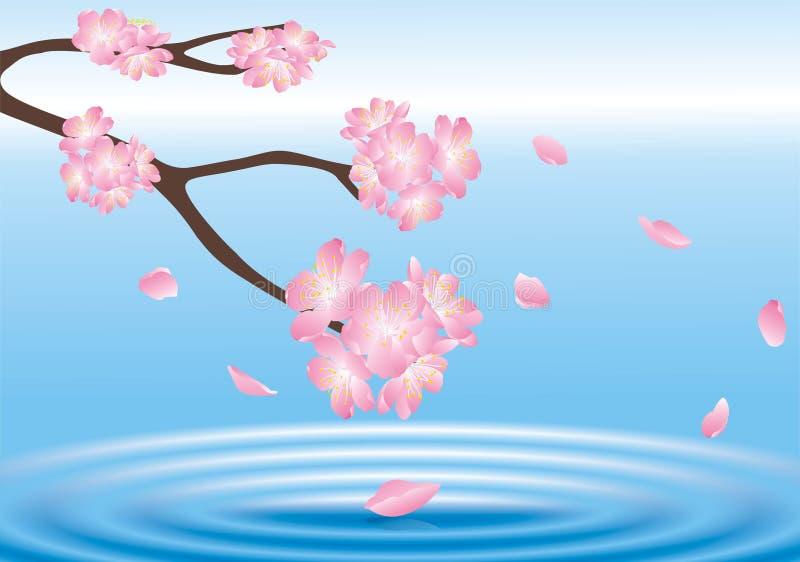 επάνω από το ύδωρ λουλου&de απεικόνιση αποθεμάτων