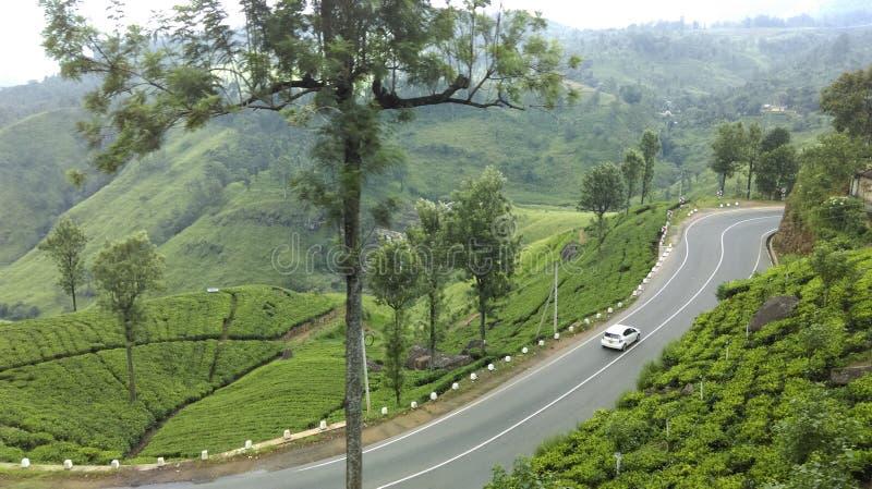 Επάνω στην ομορφιά Σρι Λάνκα χωρών στοκ εικόνα με δικαίωμα ελεύθερης χρήσης