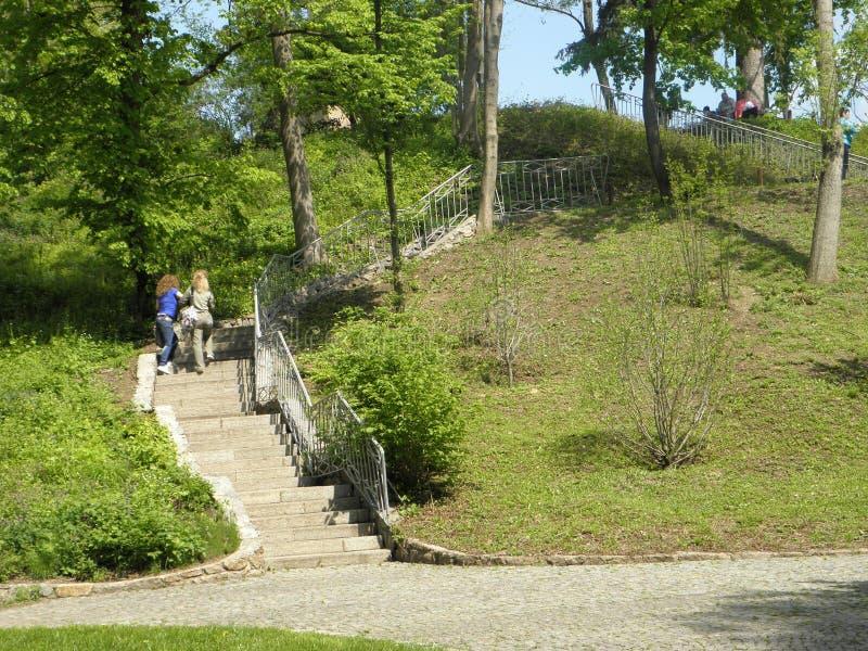 Επάνω στο πάρκο στοκ φωτογραφίες με δικαίωμα ελεύθερης χρήσης