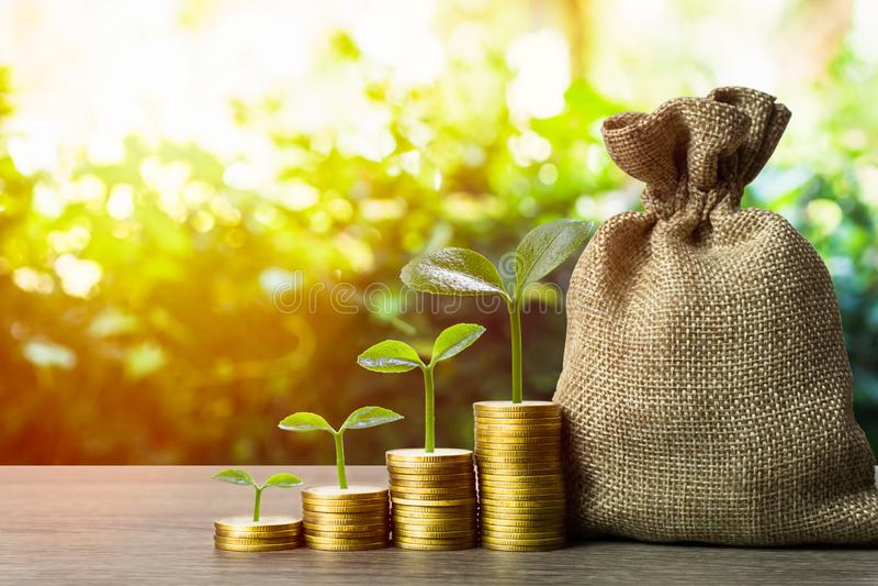 Επένδυση χρημάτων και χρήματος Ένα φυτό που μεγαλώνει σε μια στοίβα κερμάτων με σακίδιο χρήματος και φυσικό φόντο στοκ εικόνες
