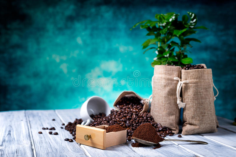 Επίγειος καφές με τις εγκαταστάσεις coffe στοκ φωτογραφία με δικαίωμα ελεύθερης χρήσης