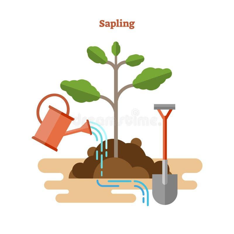 Επίπεδη διανυσματική απεικόνιση με τη διαδικασία δενδρυλλίων Η συρμένα κηπουρική και το σπορόφυτο με τον πράσινο νεαρό βλαστό, πό ελεύθερη απεικόνιση δικαιώματος