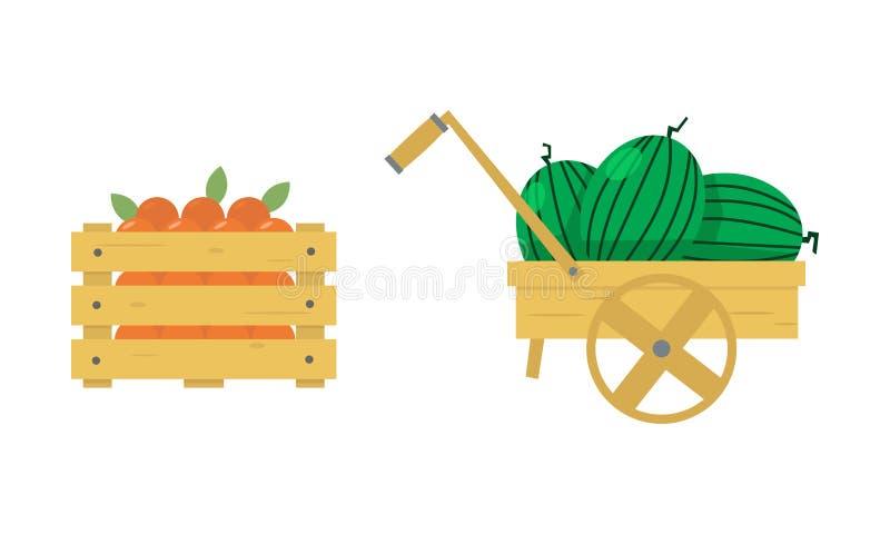 Επίπεδη διανυσματική απεικόνιση του ξύλινου κιβωτίου με τα juicy πορτοκάλια και wheelbarrow με τα ώριμα καρπούζια καρποί οργανικο απεικόνιση αποθεμάτων