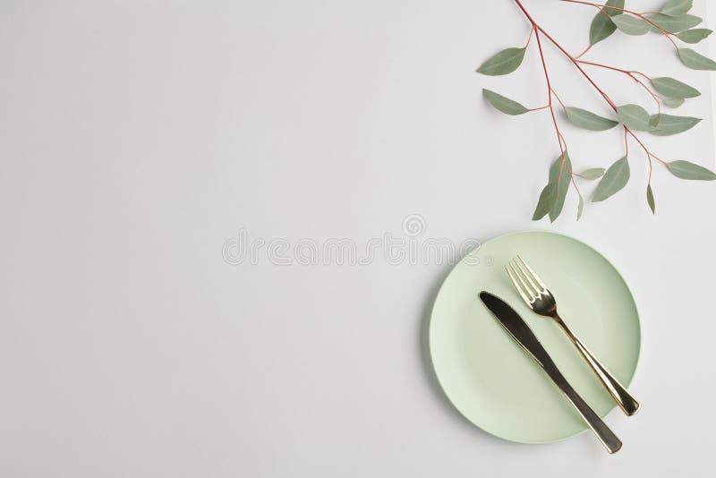 Επίπεδη επιφάνεια λευκού πορσελάνινου τσίγκου με χαλύβδινο μαχαίρι, πιρούνι και κλαδιά φυτών στοκ φωτογραφία με δικαίωμα ελεύθερης χρήσης