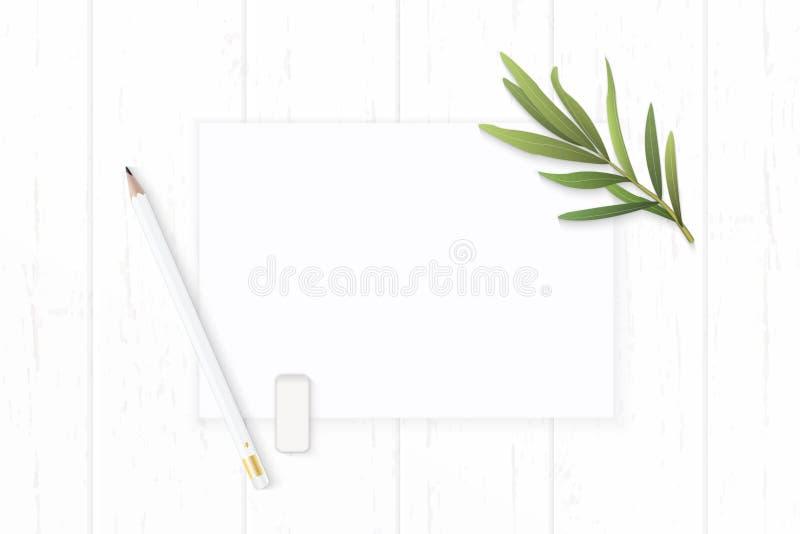 Επίπεδος βάλτε την κομψά άσπρα γόμα μολυβιών εγγράφου σύνθεσης τοπ άποψης και το φύλλο τραχουριού στο ξύλινο υπόβαθρο στοκ εικόνα με δικαίωμα ελεύθερης χρήσης