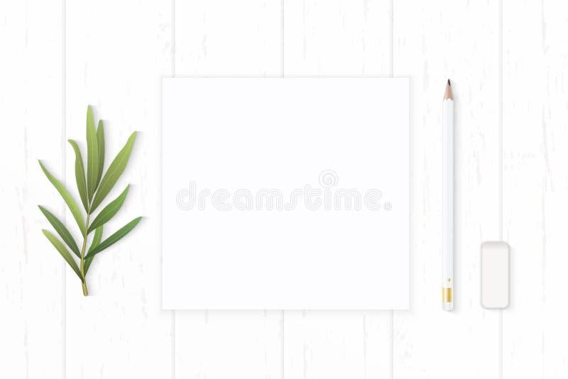Επίπεδος βάλτε την κομψά άσπρα γόμα μολυβιών εγγράφου σύνθεσης τοπ άποψης και το φύλλο τραχουριού στο ξύλινο υπόβαθρο στοκ φωτογραφία με δικαίωμα ελεύθερης χρήσης
