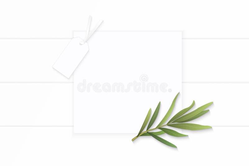 Επίπεδος βάλτε το κομψές άσπρες φύλλο τραχουριού εγγράφου σύνθεσης τοπ άποψης καφετιές και την ετικέττα χαρτονιού στο ξύλινο υπόβ στοκ φωτογραφίες