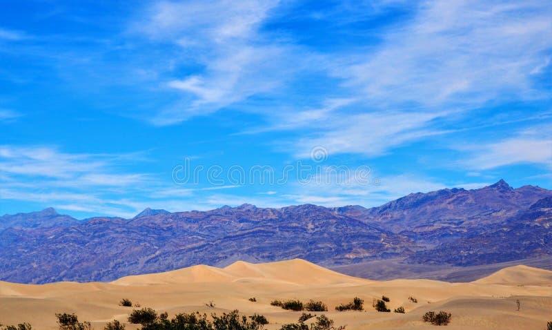 Επίπεδη κοιλάδα θανάτου αμμόλοφων άμμου Mesquite στοκ εικόνα με δικαίωμα ελεύθερης χρήσης