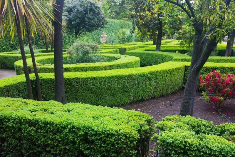 επίσημος γαλλικός κήπος στοκ εικόνες με δικαίωμα ελεύθερης χρήσης