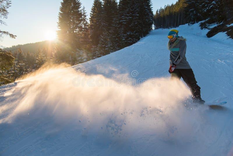Επαγγελματική οδήγηση snowboarder στα βουνά στοκ εικόνες
