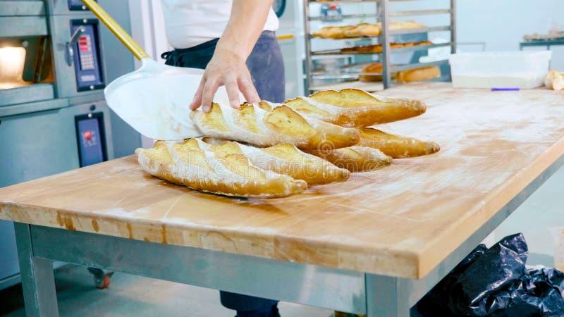 Επαγγελματικός αρτοποιός που παίρνει το ψωμί έξω από το φούρνο σε μια εμπορική κουζίνα στοκ φωτογραφίες