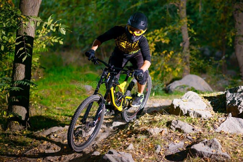 Επαγγελματικός ποδηλάτης που οδηγά το ποδήλατο βουνών στο δασικό ίχνος φθινοπώρου Ακραίος αθλητισμός και έννοια ανακύκλωσης Endur στοκ φωτογραφίες με δικαίωμα ελεύθερης χρήσης