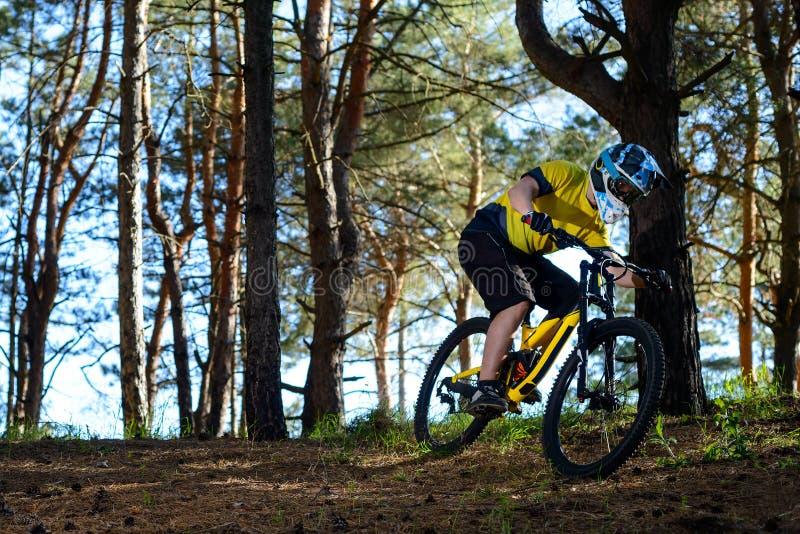 Επαγγελματικός ποδηλάτης στην κίτρινη μπλούζα και κράνος που οδηγά το ποδήλατο στη δασική ακραία αθλητική έννοια στοκ φωτογραφίες