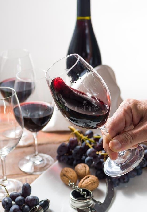 Επαγγελματικό γεγονός δοκιμής κόκκινου κρασιού με υψηλό - γυαλί ποιοτικού κρασιού στοκ φωτογραφία με δικαίωμα ελεύθερης χρήσης