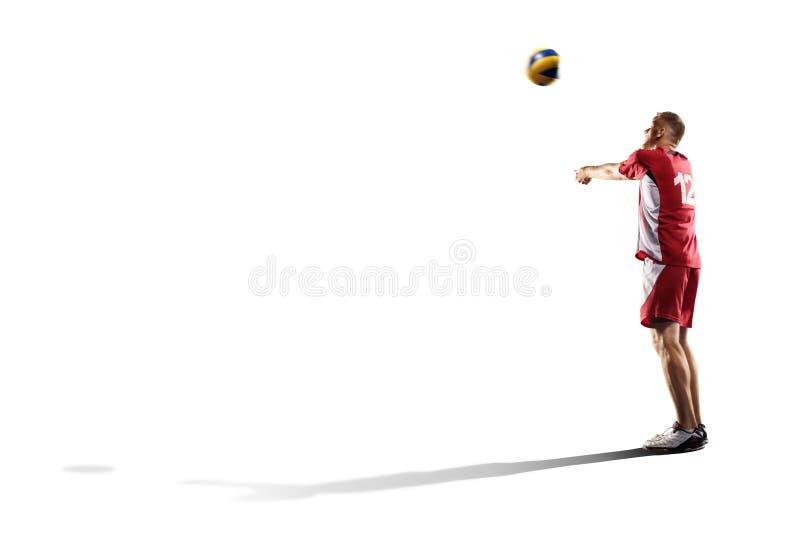 Επαγγελματικός φορέας valleyball που απομονώνεται στο λευκό στοκ εικόνες με δικαίωμα ελεύθερης χρήσης