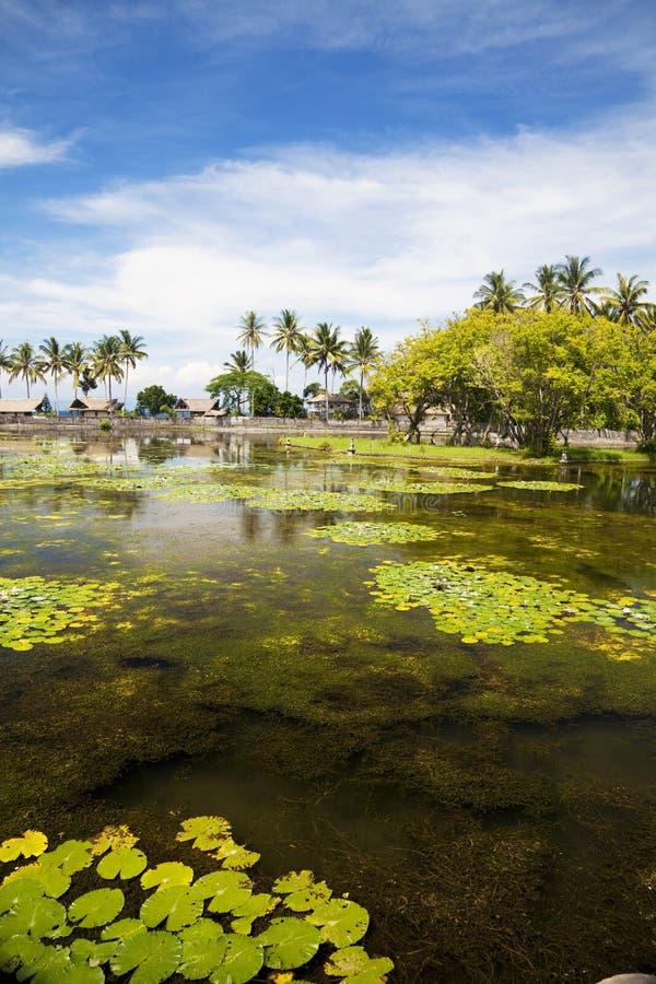 επαρχία Ινδονησία candidasa του Μ&p στοκ εικόνες