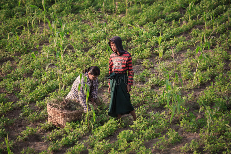 Επαρχία του Μιανμάρ στοκ φωτογραφία