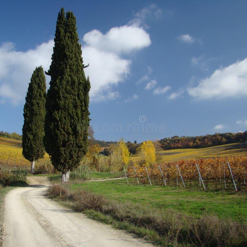 επαρχία tuscan στοκ φωτογραφίες