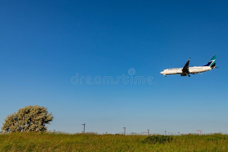 Επιβατικό αεροπλάνο WestJet ακριβώς επάνω από τους τομείς κοντά στο διεθνή αερολιμένα PEARSON, Τορόντο στοκ εικόνες με δικαίωμα ελεύθερης χρήσης