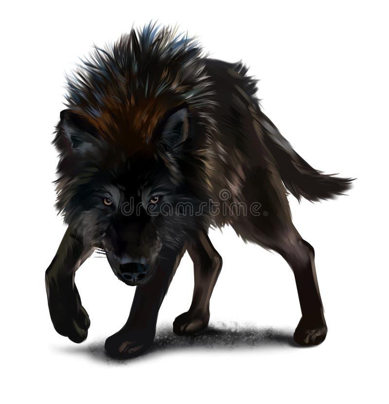 Επιθετική μαύρη ζωγραφική watercolor λύκων διανυσματική απεικόνιση