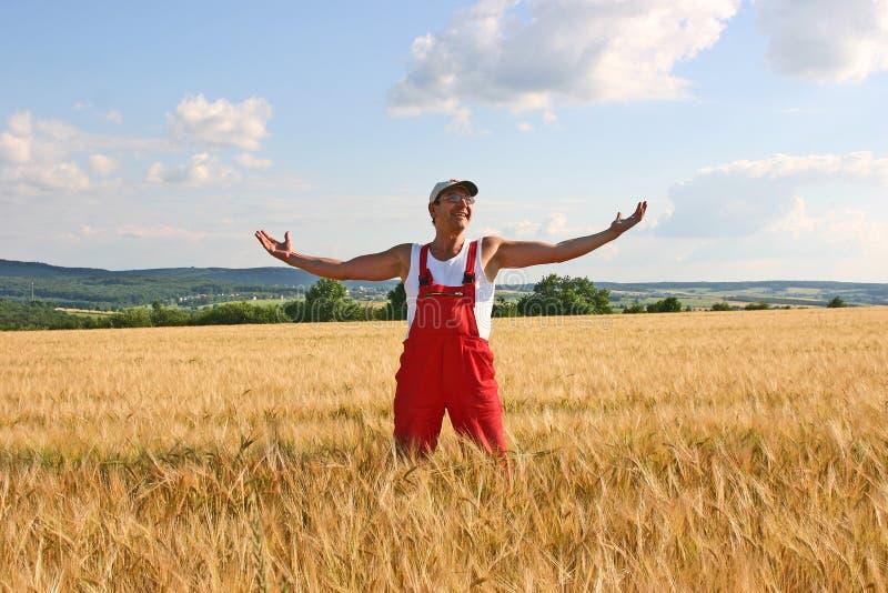 επιθεώρηση αγροτών κριθα στοκ φωτογραφίες με δικαίωμα ελεύθερης χρήσης