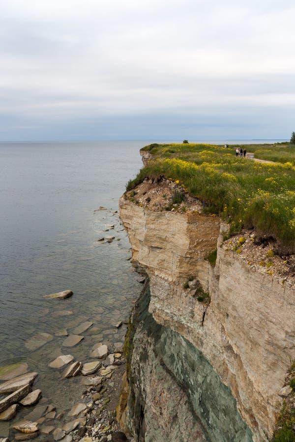 Επικίνδυνη άκρη απότομων βράχων με το κίτρινο λιβάδι λουλουδιών στοκ φωτογραφίες