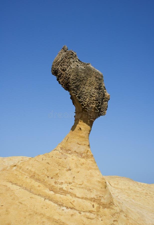 επικεφαλής βράχος s βασί&lambda στοκ εικόνες