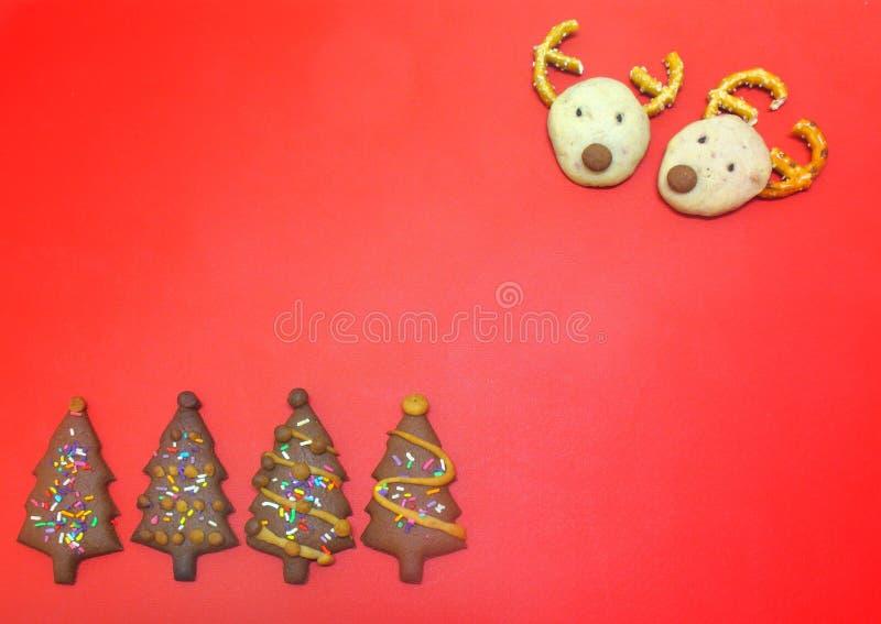 Επικεφαλής μπισκότα σοκολάτας ελαφιών και μπισκότα μούρων χριστουγεννιάτικων δέντρων στο κόκκινο πλαστικό υπόβαθρο στοκ εικόνες