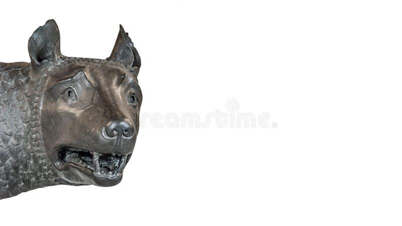 Επικεφαλής του αγάλματος λύκων μητέρων από τη Ρώμη, που απομονώνεται στο υπόβαθρο στοκ φωτογραφία