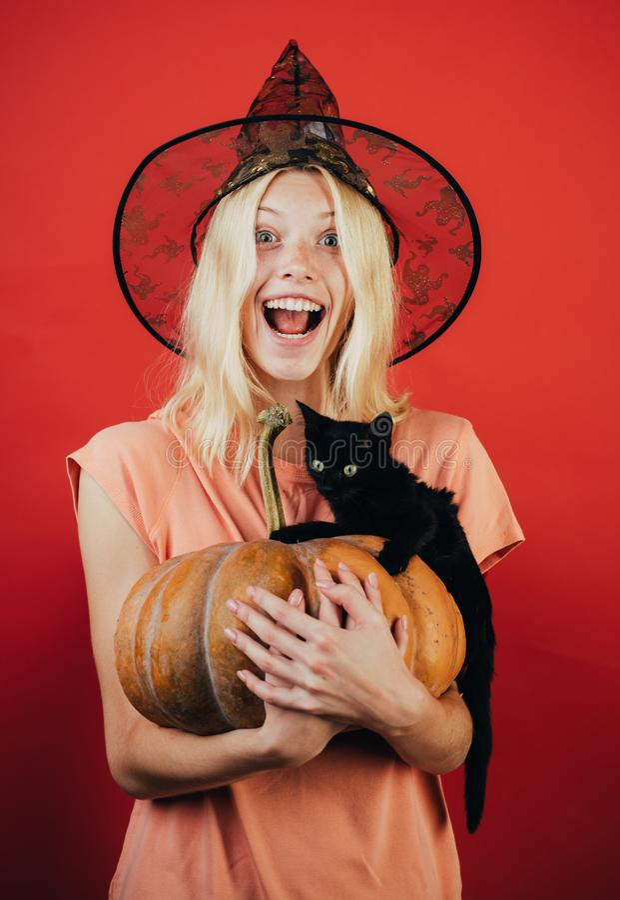Επικεφαλής φανάρι γρύλων κολοκύθας Χαρασμένη κολοκύθα - αστεία έννοια Πρόσωπο έκφρασης - έκπληκτη γυναίκα Η μαύρη γάτα κάθεται σε στοκ φωτογραφία