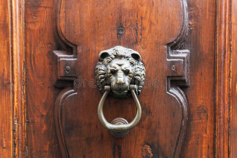 Επικεφαλής ρόπτρα λιονταριών στην παλαιά ξύλινη πόρτα στη Φλωρεντία στοκ εικόνα