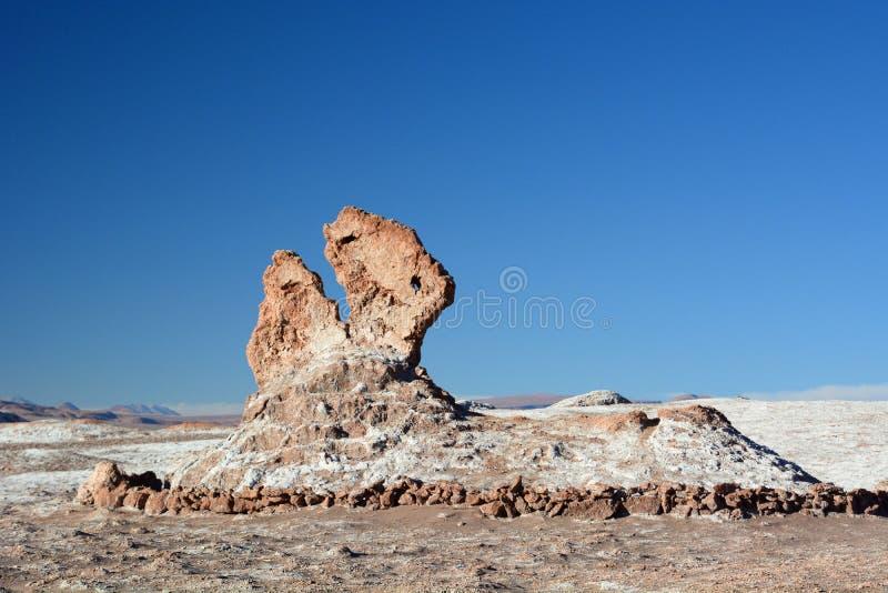 Επικεφαλής σχηματισμός βράχου δεινοσαύρων Valle de Λα Luna ή κοιλάδα φεγγαριών SAN Pedro de Atacama Χιλή στοκ εικόνα