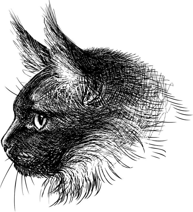 Επικεφαλής της γάτας διανυσματική απεικόνιση