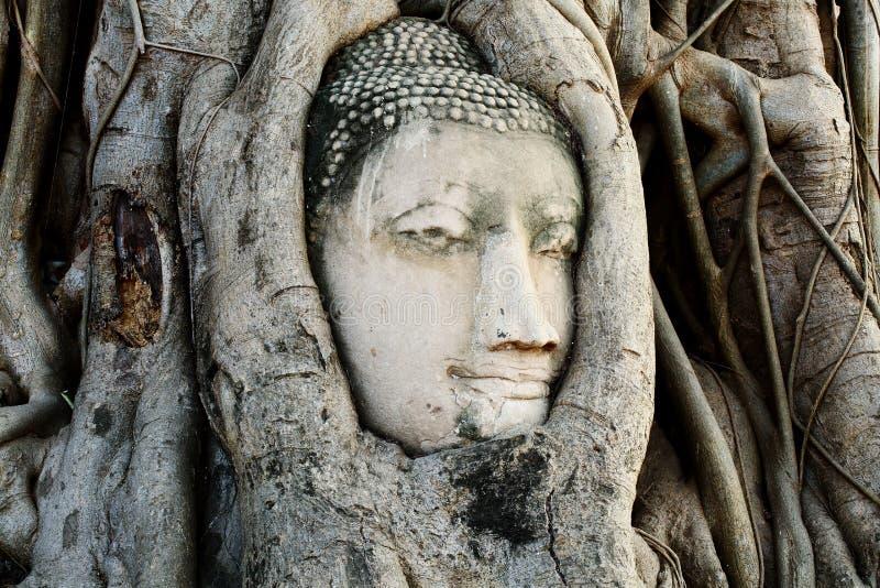 Επικεφαλής του αγάλματος του Βούδα με τις ρίζες δέντρων σε Wat Mahathat, ιστορική περιοχή της Ταϊλάνδης στοκ φωτογραφία με δικαίωμα ελεύθερης χρήσης