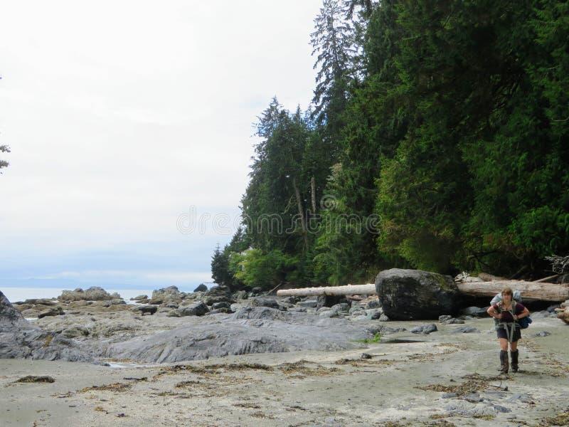 Επικό πεζοπορώ κατά μήκος του ίχνους δυτικών ακτών, Νησί Βανκούβερ, Καναδάς στοκ εικόνα με δικαίωμα ελεύθερης χρήσης