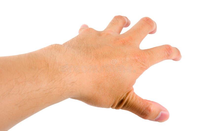 επιλέγοντας χέρι στοκ εικόνα με δικαίωμα ελεύθερης χρήσης