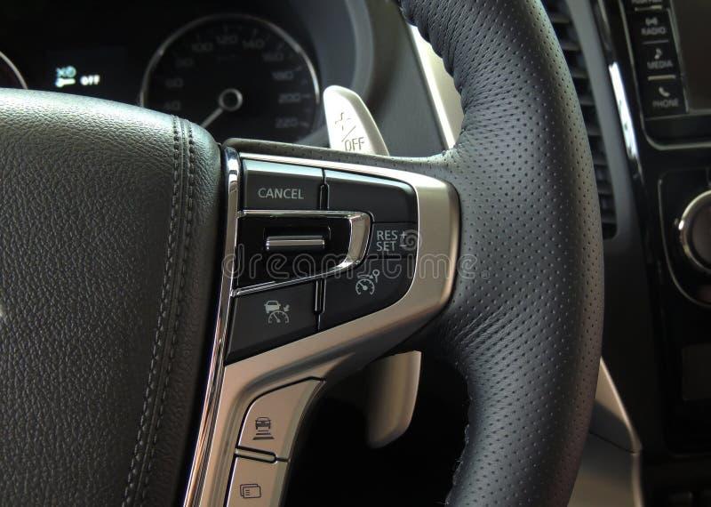Επιλογείς ελέγχου και τρόπου ταχύτητας στο πολλών χρήσεων τιμόνι μέσα σε ένα όχημα στοκ εικόνα με δικαίωμα ελεύθερης χρήσης