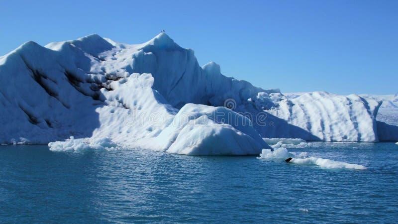 Επιπλέοντα μπλε παγόβουνα στη φυσική μπλε λιμνοθάλασσα στοκ εικόνα με δικαίωμα ελεύθερης χρήσης